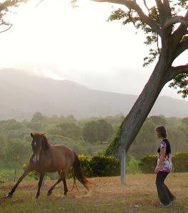 Stina Dances with Horses