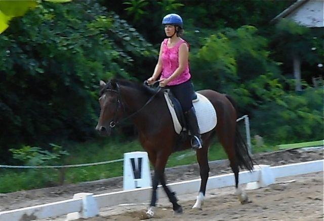 My first dressage lesson at Akoele's stables in Barbados.