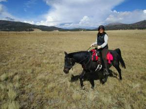 Susan knows riding. She is an  endurance rider with 2,650 competition miles.