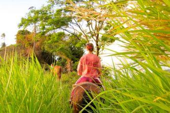 Inbetween the Sweetgrass