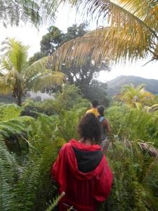 Parrot Trail