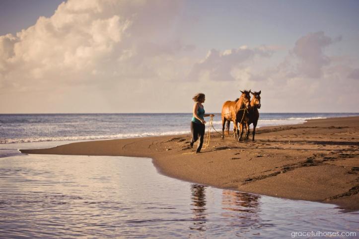 Stina-Herberg-and-horses