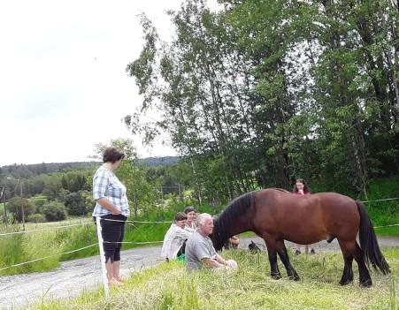 Petter Sharing Territory