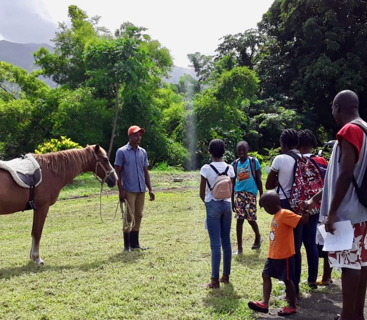 SVG – Yurumein Horse School is Open!